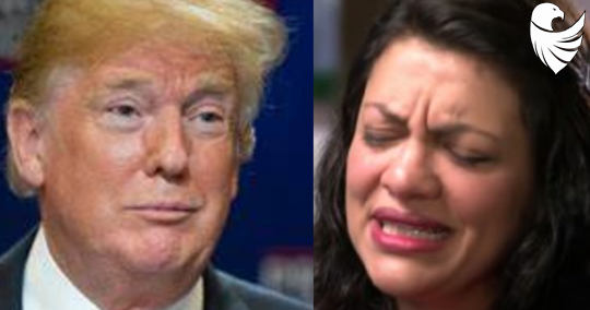 "Tlaib Calls Trump the ""Biggest Bully"" She's Dealt With, Backfires on Twitter"