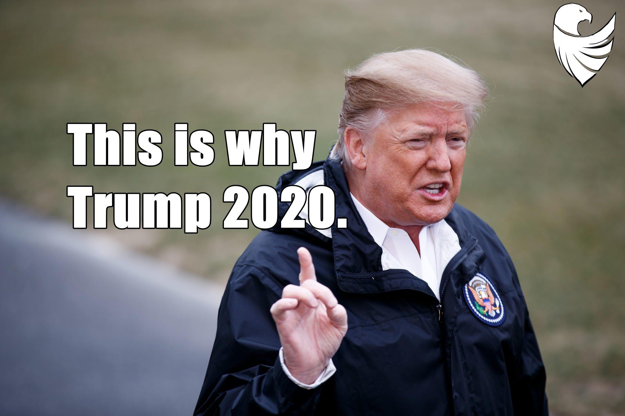 Why Trump 2020