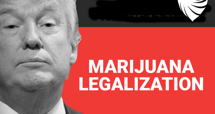Trump for marijuana legalization
