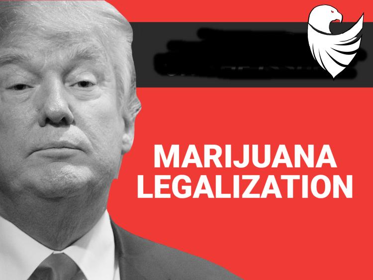 Trump for marijuana legalization